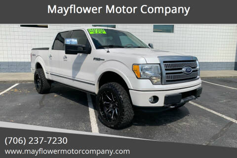 2010 Ford F-150 for sale at Mayflower Motor Company in Rome GA