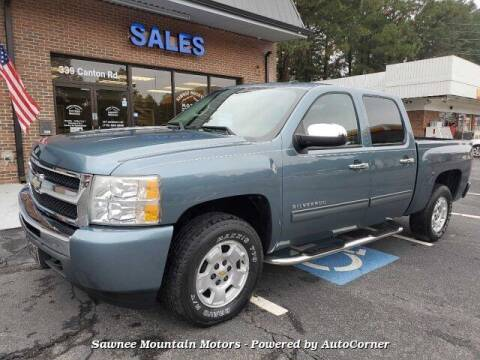 2010 Chevrolet Silverado 1500 for sale at Michael D Stout in Cumming GA
