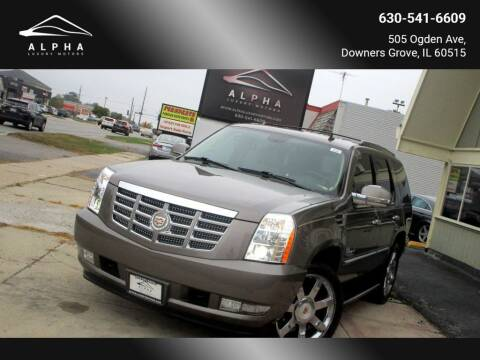 2013 Cadillac Escalade for sale at Alpha Luxury Motors in Downers Grove IL