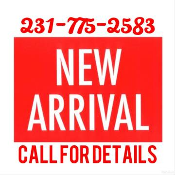 2015 Dodge Journey for sale at DON'S ADOPT A CAR in Cadillac MI