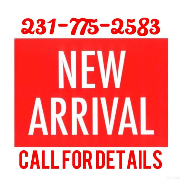 2011 Jeep Patriot for sale at DON'S ADOPT A CAR in Cadillac MI