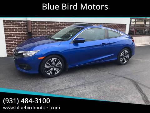 2017 Honda Civic for sale at Blue Bird Motors in Crossville TN