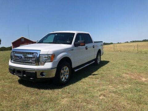 2014 Ford F-150 for sale at CAVENDER MOTORS in Van Alstyne TX