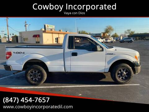 2010 Ford F-150 for sale at Cowboy Incorporated in Waukegan IL