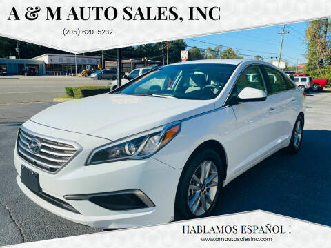 2016 Hyundai Sonata for sale at A & M Auto Sales, Inc in Alabaster AL