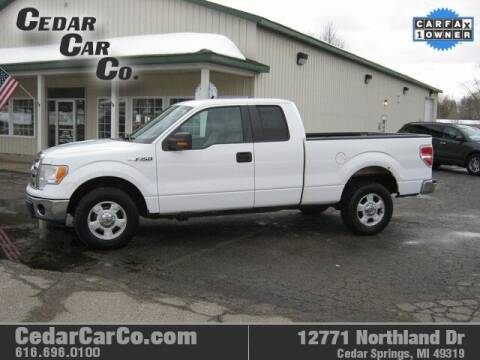 2009 Ford F-150 for sale at Cedar Car Co in Cedar Springs MI