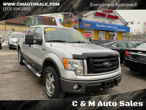 2009 Ford F-150 for sale at C & M Auto Sales in Detroit MI