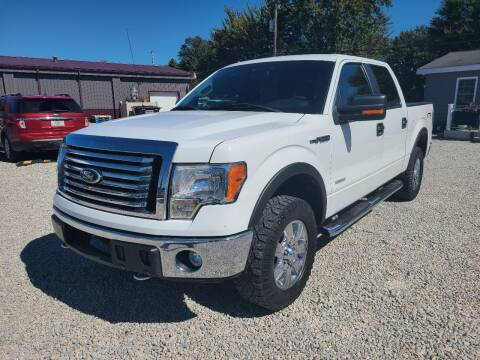 2011 Ford F-150 for sale at Davidson Auto Deals in Syracuse IN