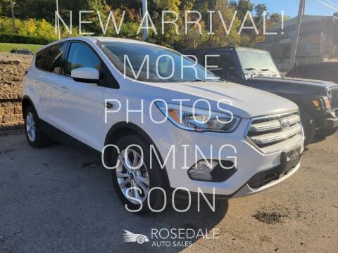 2017 Ford Escape for sale at Rosedale Auto Sales Incorporated in Kansas City KS