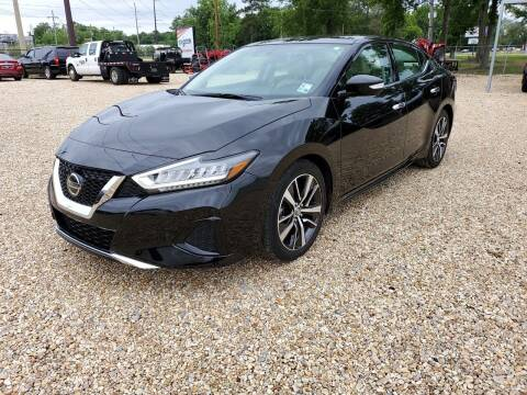 2019 Nissan Maxima for sale at Community Auto Specialist in Gonzales LA