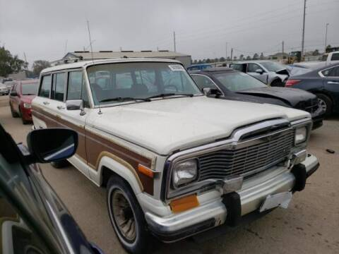 1984 Jeep Grand Wagoneer for sale at OVE Car Trader Corp in Tampa FL
