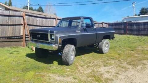 1973 Chevrolet C/K 1500 Series for sale at Classic Car Deals in Cadillac MI