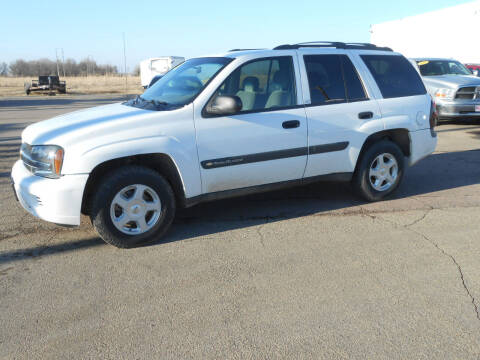 2003 Chevrolet TrailBlazer for sale at Salmon Automotive Inc. in Tracy MN