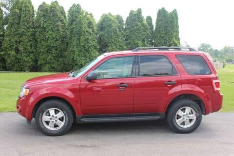2011 Ford Escape for sale at D & B Auto Sales LLC in Washington MI