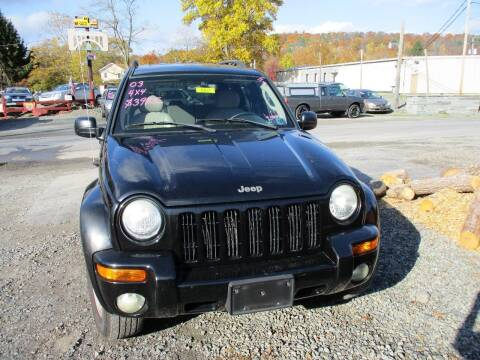 2003 Jeep Liberty for sale at FERNWOOD AUTO SALES in Nicholson PA