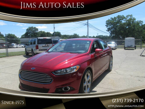 2013 Ford Fusion for sale at Jims Auto Sales in Muskegon MI