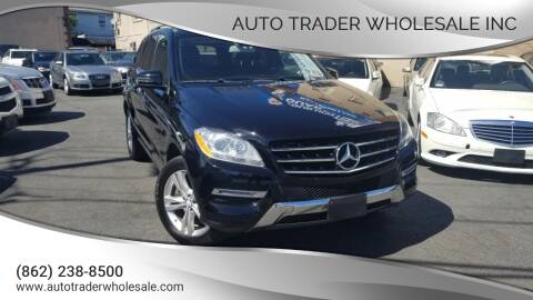 2013 Mercedes-Benz M-Class for sale at Auto Trader Wholesale Inc in Saddle Brook NJ
