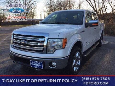 2014 Ford F-150 for sale at Fort Dodge Ford Lincoln Toyota in Fort Dodge IA