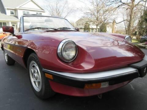 1988 Alfa Romeo Spider for sale at Classic Car Deals in Cadillac MI