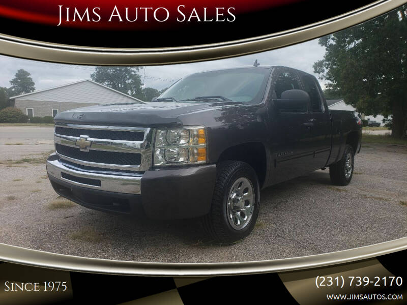 2011 Chevrolet Silverado 1500 for sale at Jims Auto Sales in Muskegon MI