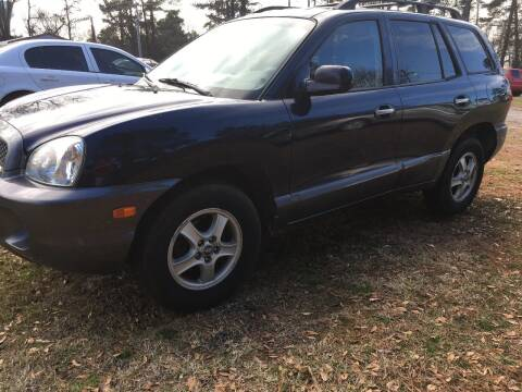 2004 Hyundai Santa Fe for sale at Mountain View Auto Sales in Easley SC