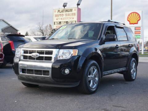 2010 Ford Escape for sale at PLATINUM AUTO SALES in Dearborn MI