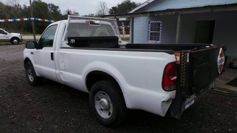 2006 Ford F-250 Super Duty for sale at action auto wholesale llc in Lillian AL