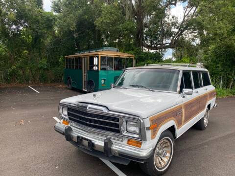 1989 Jeep Grand Wagoneer for sale at ManyEcars.com in Mount Dora FL