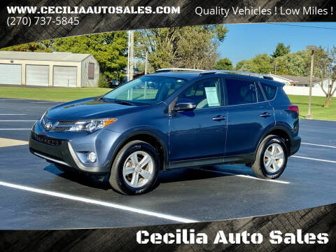 2014 Toyota RAV4 for sale at Cecilia Auto Sales in Elizabethtown KY