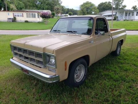 1978 GMC C/K 1500 Series for sale at Classic Car Deals in Cadillac MI