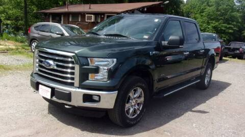 2015 Ford F-150 for sale at Select Cars Of Thornburg in Fredericksburg VA