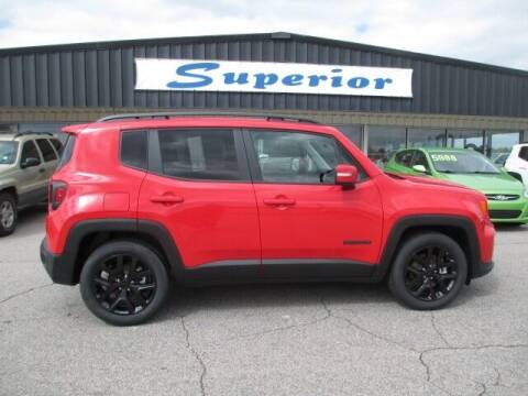 2019 Jeep Renegade for sale at SUPERIOR CHRYSLER DODGE JEEP RAM FIAT in Henderson NC