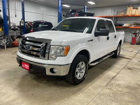2011 Ford F-150 for sale at Southwest Sales and Service in Redwood Falls MN