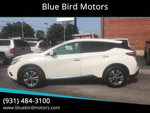 2015 Nissan Murano for sale at Blue Bird Motors in Crossville TN