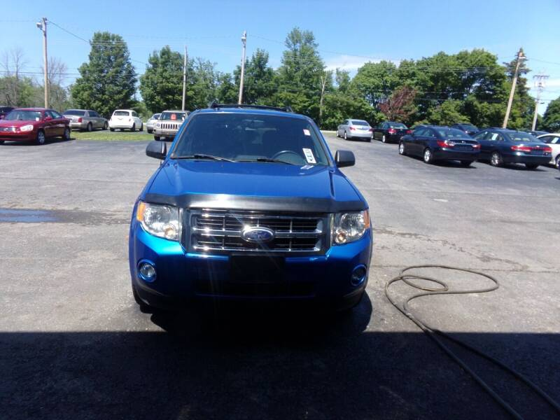2011 Ford Escape for sale in Spencerport, NY