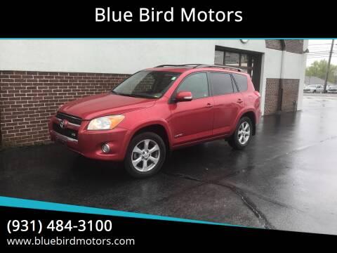 2011 Toyota RAV4 for sale at Blue Bird Motors in Crossville TN
