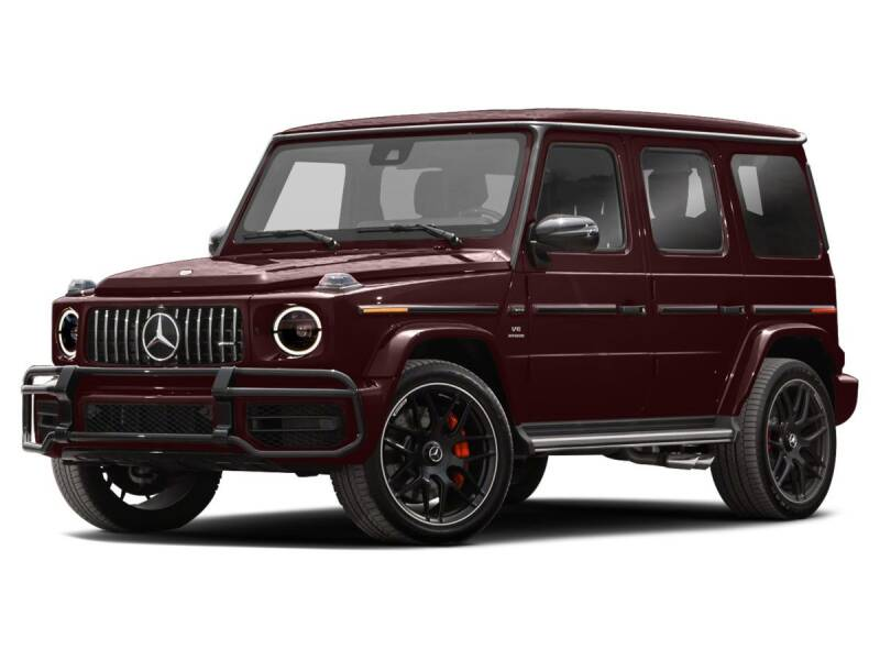 2019 Mercedes-Benz G-Class for sale at Mercedes-Benz of North Olmsted in North Olmsted OH