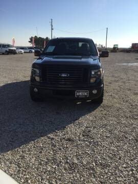 2012 Ford F-150 for sale at Drive in Leachville AR