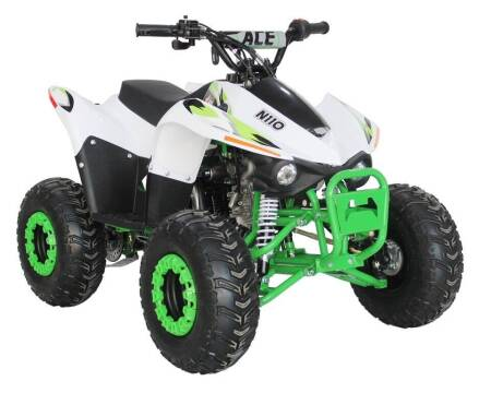 2020 EGL ACE 110cc for sale at Buhs Auto Sales in Kenosha WI