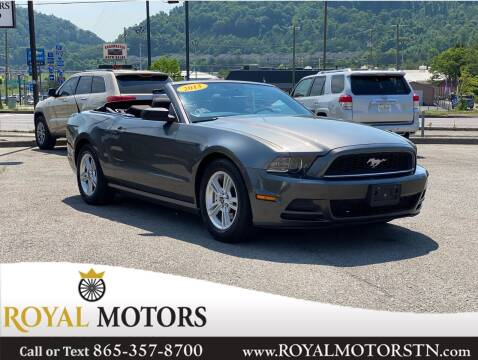 2013 Ford Mustang for sale at ROYAL MOTORS LLC in Knoxville TN