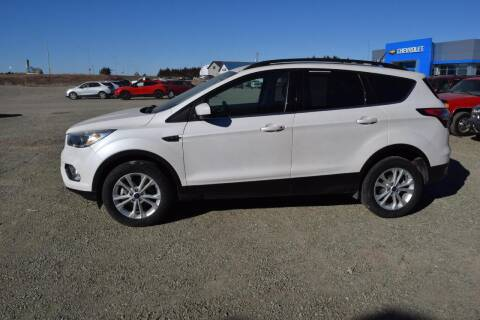2018 Ford Escape for sale at Tripe Motor Company in Alma NE