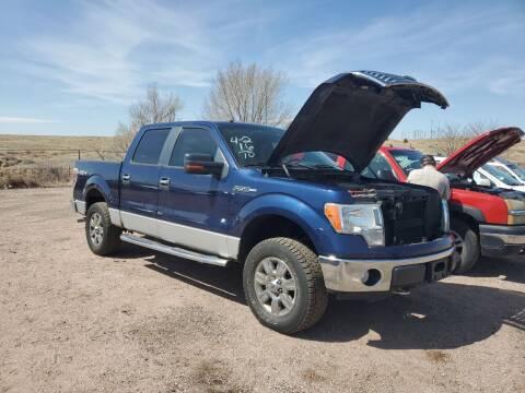 2010 Ford F-150 for sale at PYRAMID MOTORS - Pueblo Lot in Pueblo CO