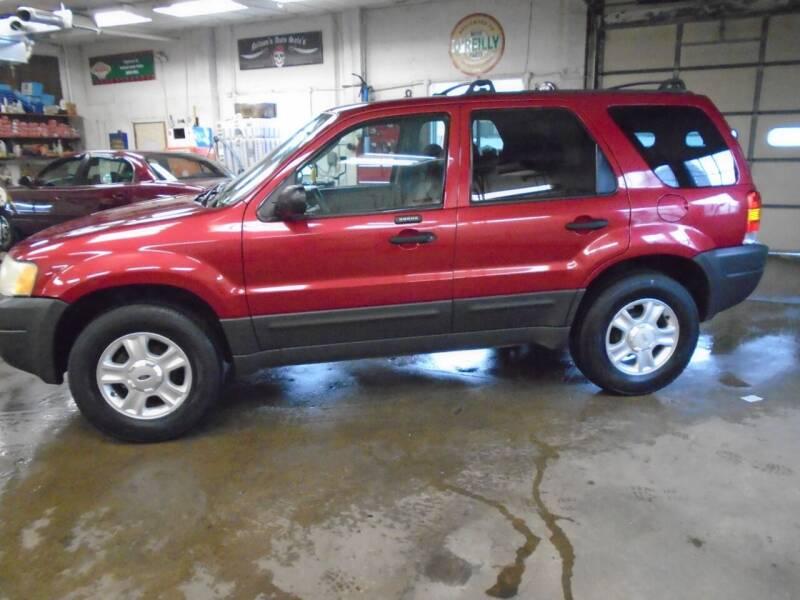 2004 Ford Escape for sale at Nelson Auto Sales in Toulon IL