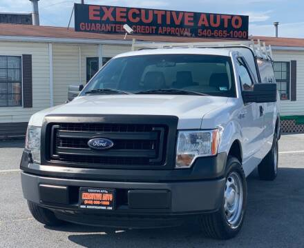 2014 Ford F-150 for sale at Executive Auto in Winchester VA