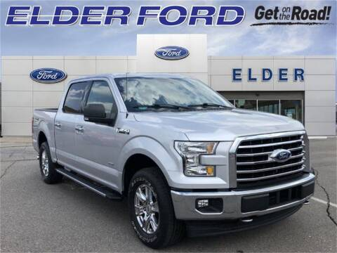 2017 Ford F-150 for sale at Mr Intellectual Cars in Troy MI