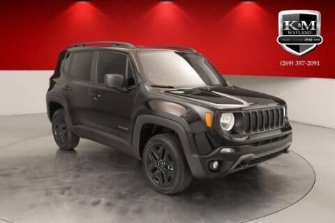2019 Jeep Renegade for sale at K&M Wayland Chrysler  Dodge Jeep Ram in Wayland MI