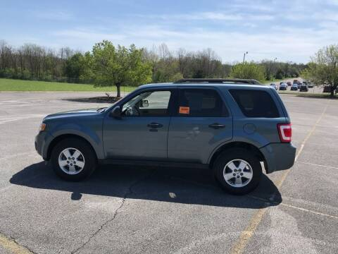 2011 Ford Escape for sale at Knoxville Wholesale in Knoxville TN