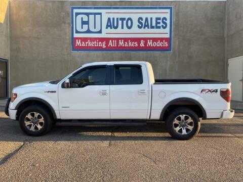 2014 Ford F-150 for sale at C U Auto Sales in Albuquerque NM