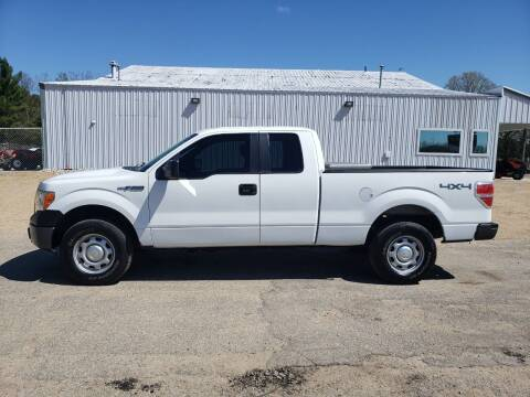 2013 Ford F-150 for sale at Steve Winnie Auto Sales in Edmore MI