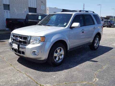 2011 Ford Escape for sale at AUTOSAVIN in Elmhurst IL